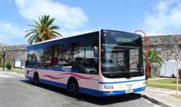 bermuda-bus